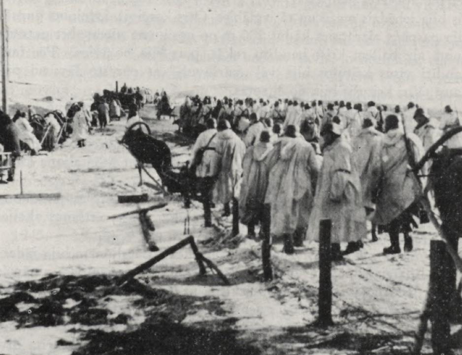 Батальон Aizpute в районе Освеи во время операции Winterzauber, 1943 год